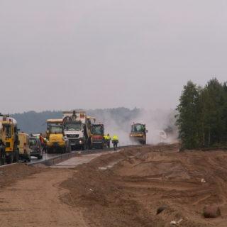 Stały nadzór herpetologiczny przy realizacji inwestycji - S7 naodcinku Miłomłyn – Olsztynek